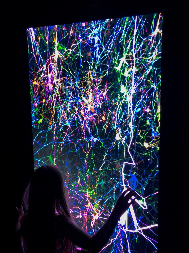 girl standing in front of neurons on screen