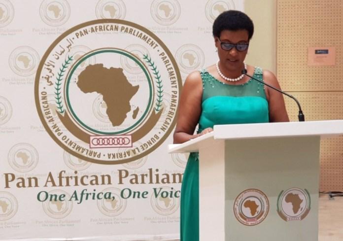 Speaker. Photo: Anthony A. K. Kamara / The AfricaPaper