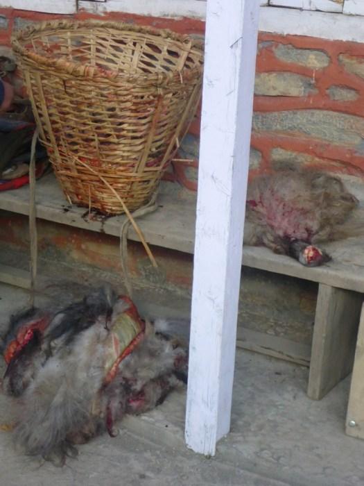Fresh Yak Meat, Cheri Letdar, Nepal