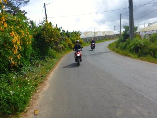 Easy Rider - Dalat, Vietnam