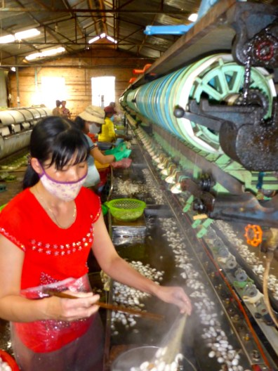 Silk Farm - Dalat, Vietnam