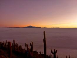 Cactus Island, Uyuni Slat Flats, Bolivia