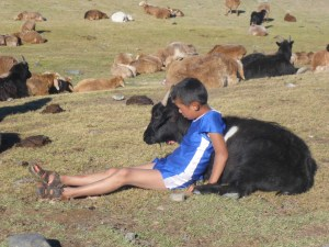 A boy and his goat, Tavan Bodg National Park; Western Mongolia
