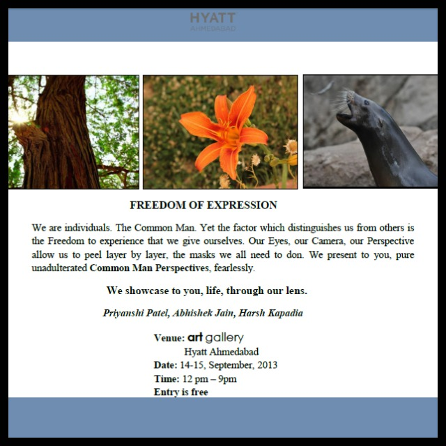 Freedom of Expression invite
