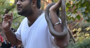 Snake Show at Sundarvan Ahmedabad | Photo © Hemil Shah and Jay Thakkar
