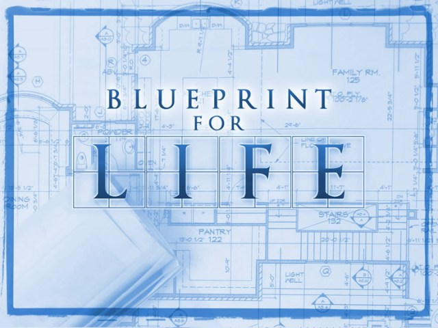Discipleship blueprint for life white house tn aim church blueprint for life malvernweather Choice Image