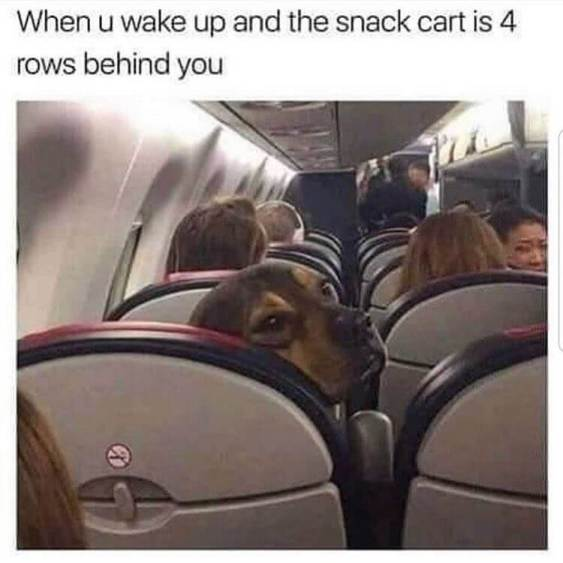 170 Funniest Travel Memes And Vacation Memes To Bring Laughter In 2021