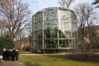 This camelia bush was planted here in 1780, and is now protected by a giant glass house.