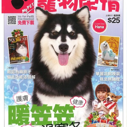 2013 December Magazine