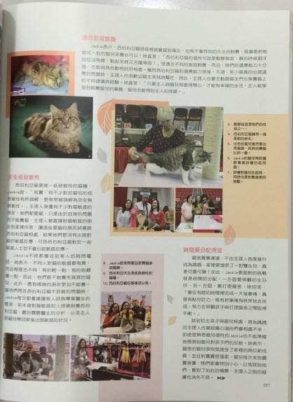 Content Page 2
