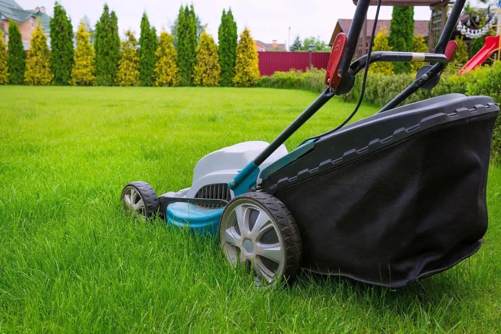electric lawn mower cutting grass in yard