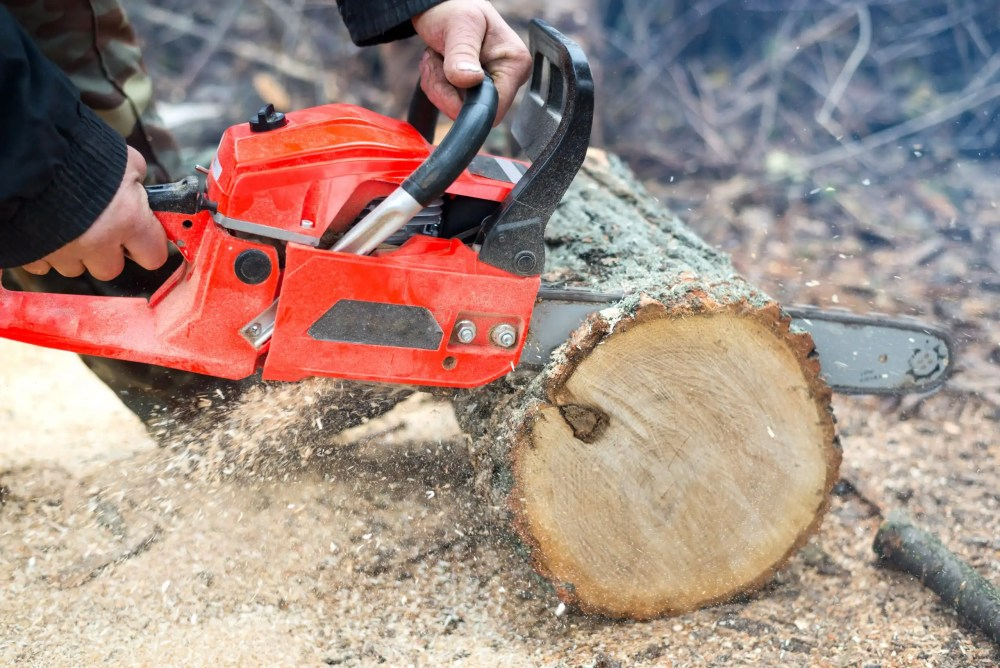 cutting wood with a chainsaw