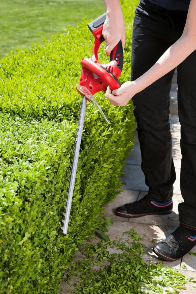 battery powered hedge trimmers