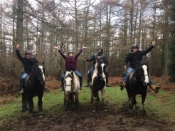 Horseback Tour, Ireland