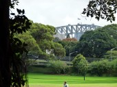 A Glimpse of Sydney Harbour Bridge