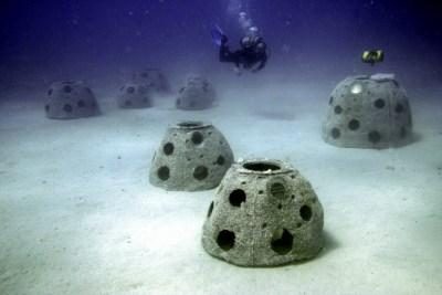 Reef Balls