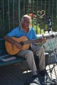 Local busker