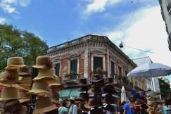 Defencia Market Buenos Aires