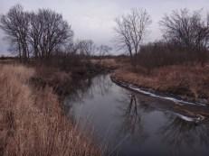 Beaver Creek Nature area