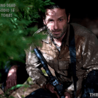 Resumo - The Walking Dead. 3ª Temporada Ep 16 Welcome to the Tombs /Season Finale