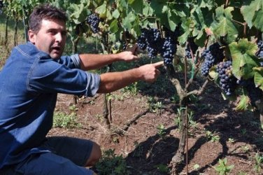 Recognized as the first Olevano Romano producer to have upped quality standards.