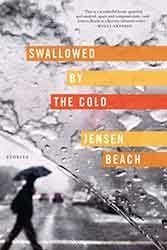 Jensen Beach's 15 stories are set in Sweden and convey equal doses of intelligence and melancholy.