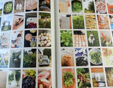 eat you veg (inside)