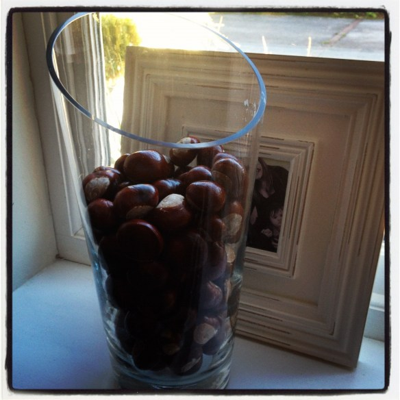 conkers in vase, home decoration