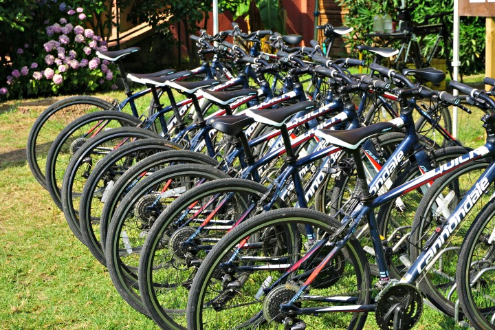 Mark Warner bike