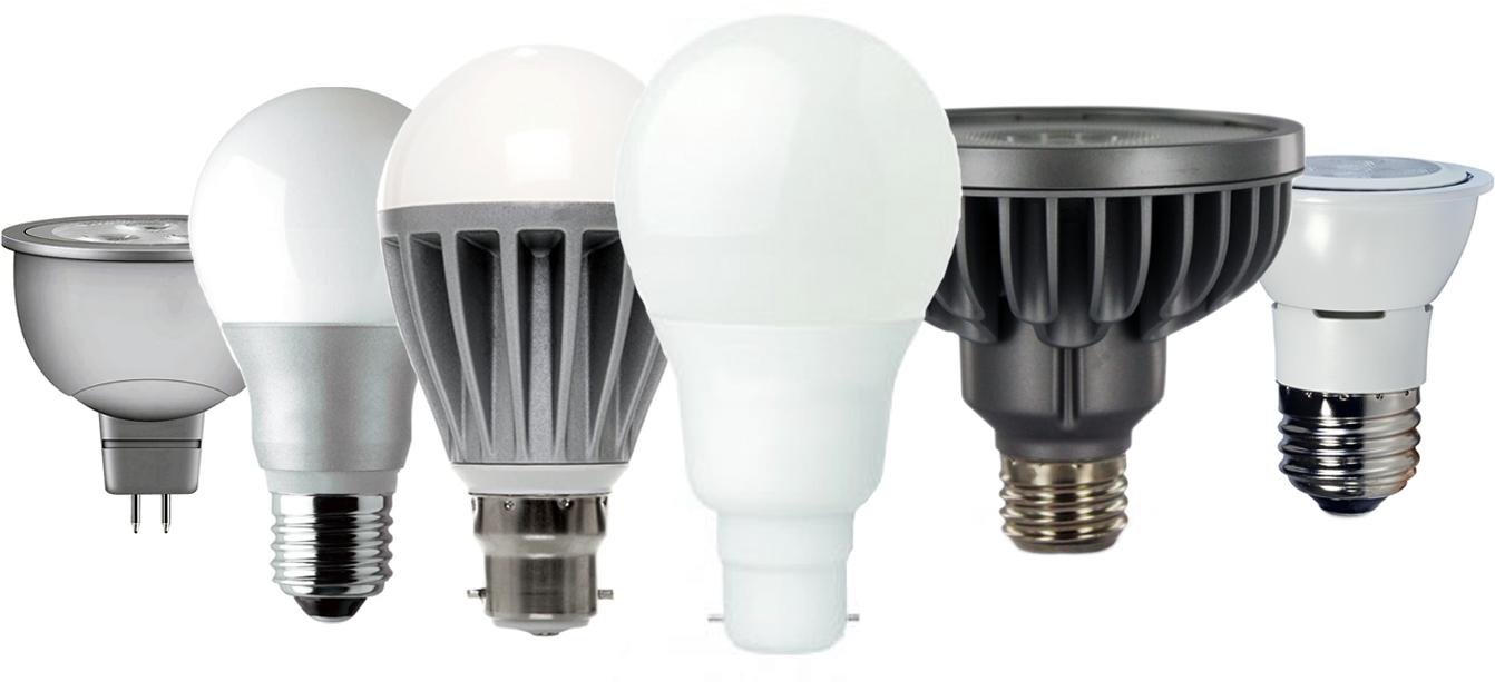 education-bulb-lineup-88e686f9366940e7c0753f58361d8f08