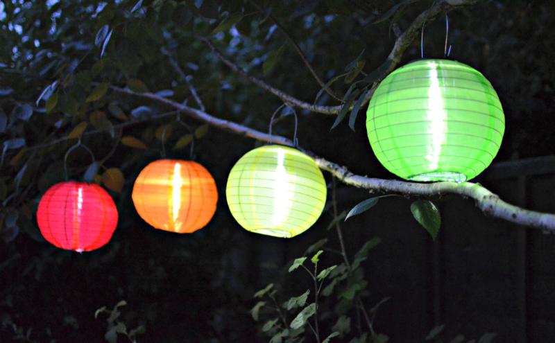 light garden 1