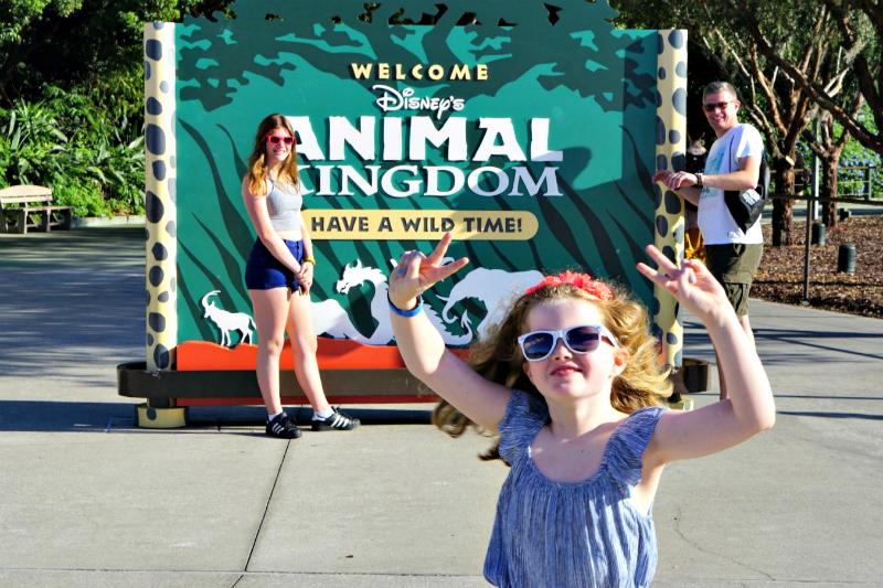 Animal Kingdom running peace