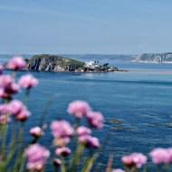 Summer Holiday Plans in South Devon