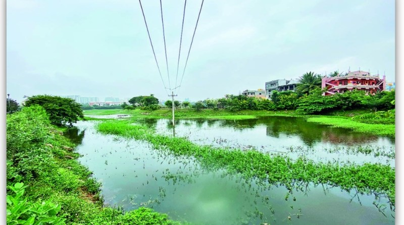 The Famous Houdini lake: that was only for few hours in Bangalore.