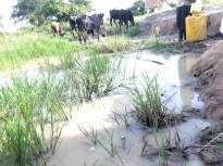 Village Water Source In Uganda, Africa