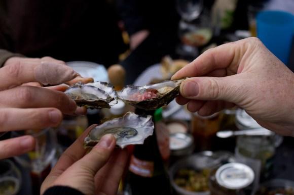 oysterfest-2014-3