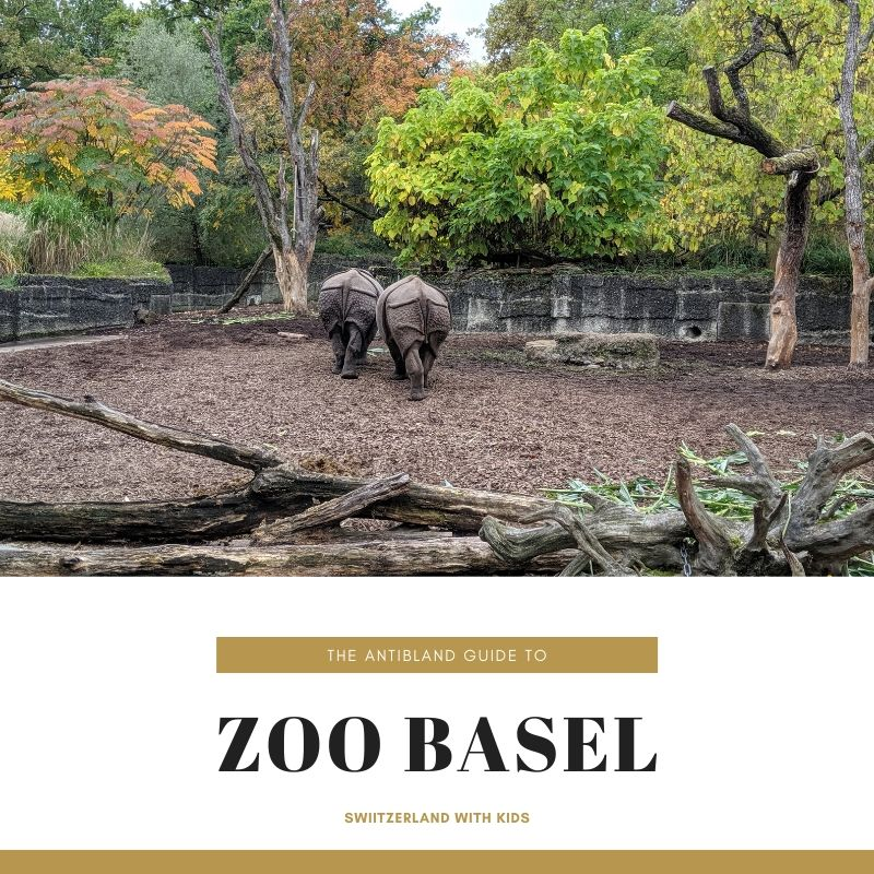 Basel Zoo: A Photo Essay