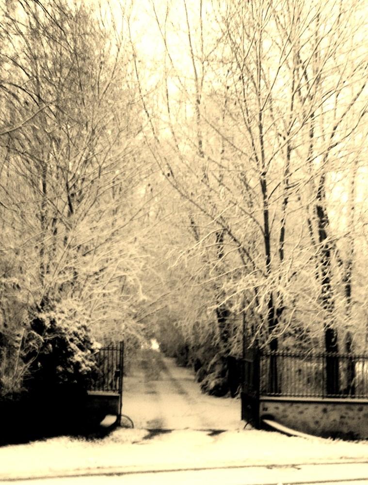 Paysages neigeux#1
