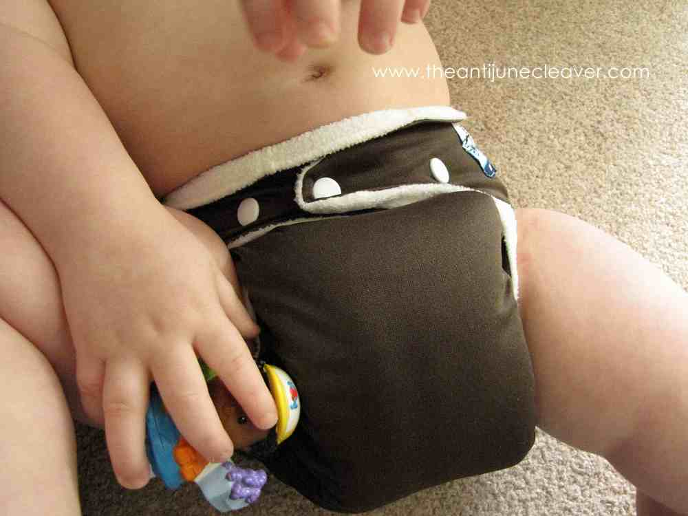 SoftBums Omni Cloth Diaper Review