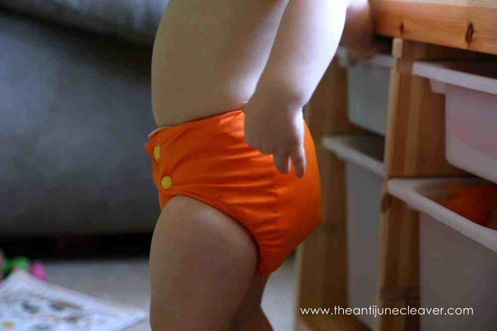 DinkleDooz Cloth Diaper Review