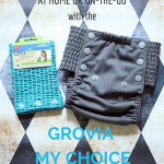 Potty Training On-the-Go or at Home is Easy with the GroVia My Choice Trainer