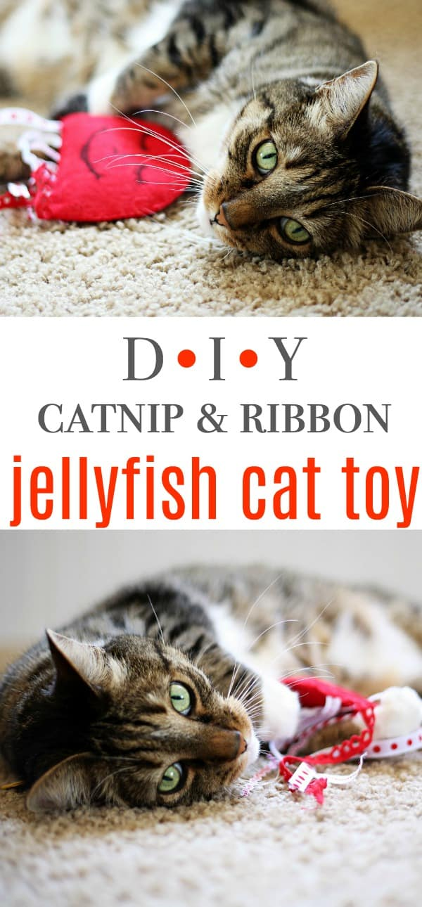 DIY Jellyfish Felt Catnip & Ribbon Cat Toy Tutorial