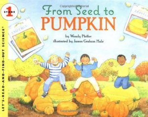Activities ideas for incorporating pumpkins into your reading and writing block!