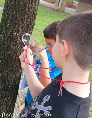 Using tools to make observations