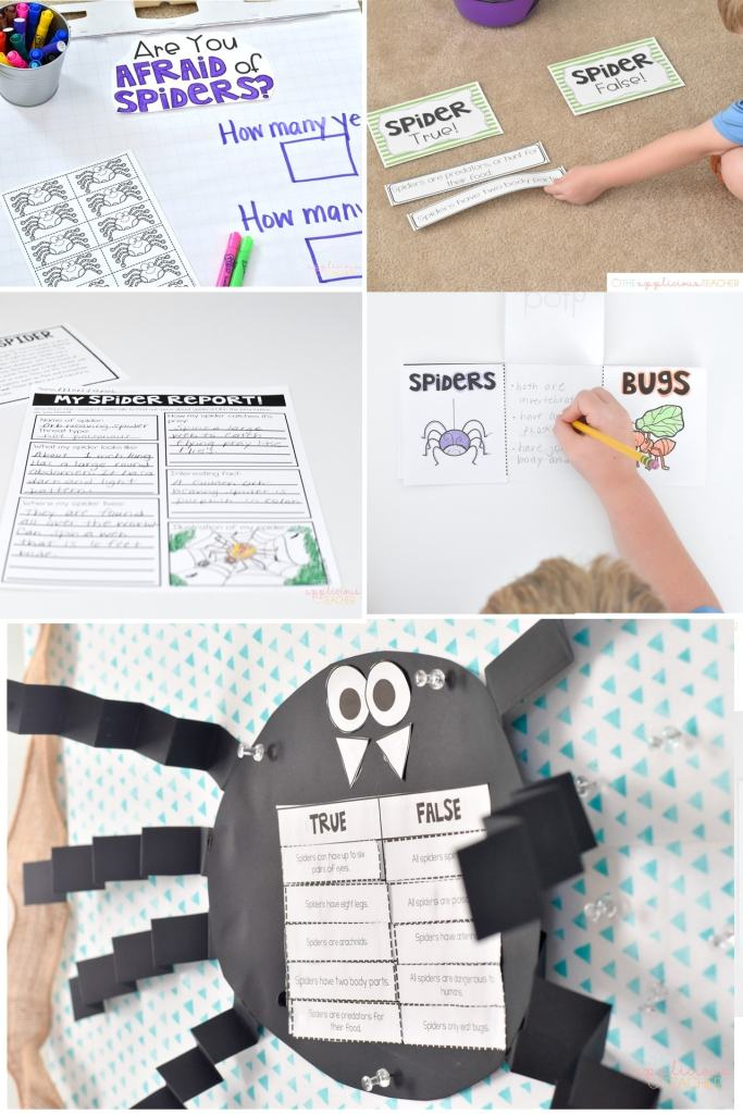 Super cute and fun spider activities perfect for 2nd grade-theAppliciousteacher.com #2ndgrade #spiderunit