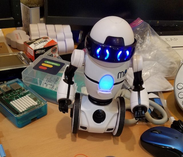 MiP robot as buddy in Real world