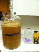 Wheat Beer in the Primary