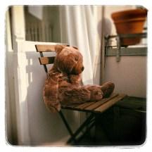 bear and balcony
