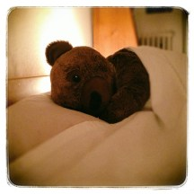 bear goes to bed