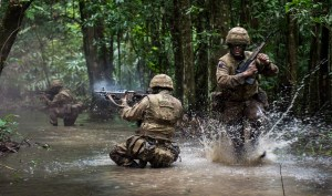 Soldiers live firing in the jungle - the sort of training an RSM likes